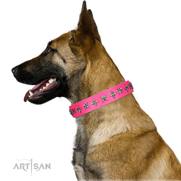 Strong natural leather dog collar with incredible studs