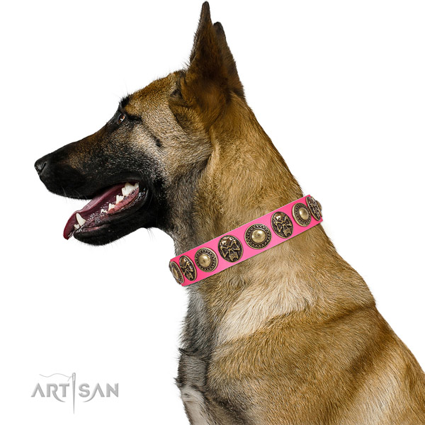 Adorned genuine leather collar for your impressive four-legged friend