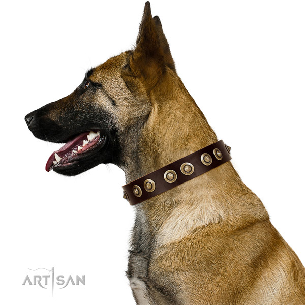 Corrosion proof D-ring on natural genuine leather dog collar for fancy walking