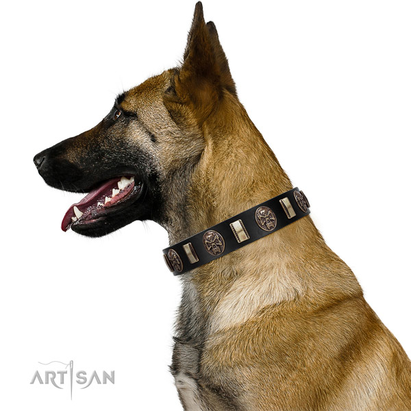 Full grain natural leather collar with embellishments for your lovely four-legged friend