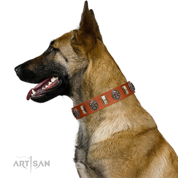 Natural leather collar with embellishments for your stylish four-legged friend