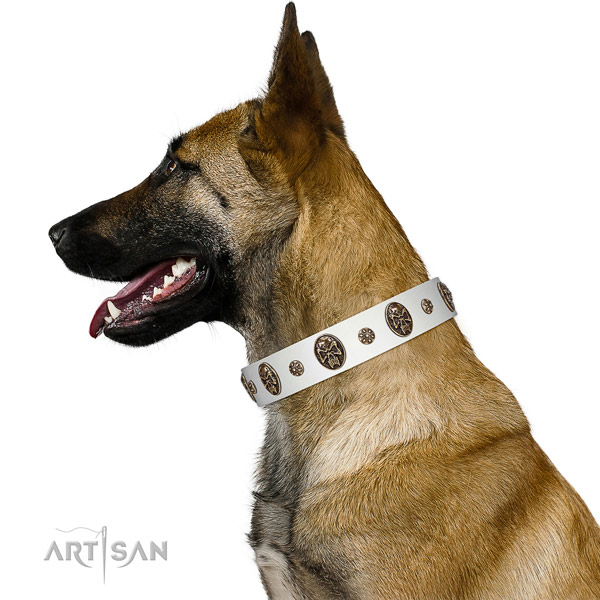 Comfortable wearing dog collar of natural leather with incredible embellishments