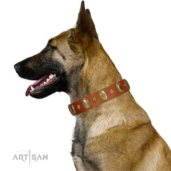 Studded leather dog collar with corrosion resistant buckle