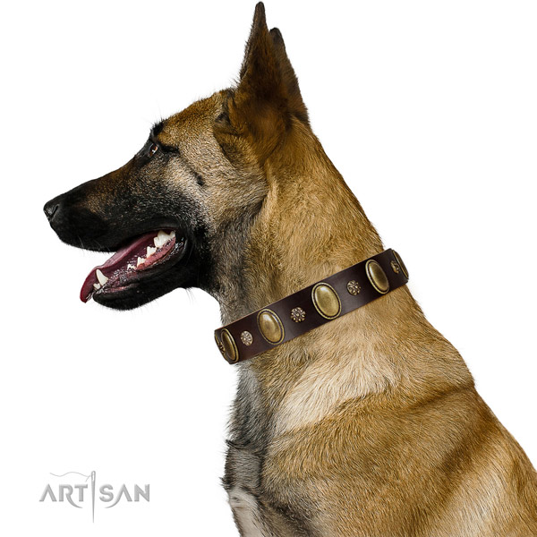 Fancy walking flexible full grain leather dog collar with embellishments