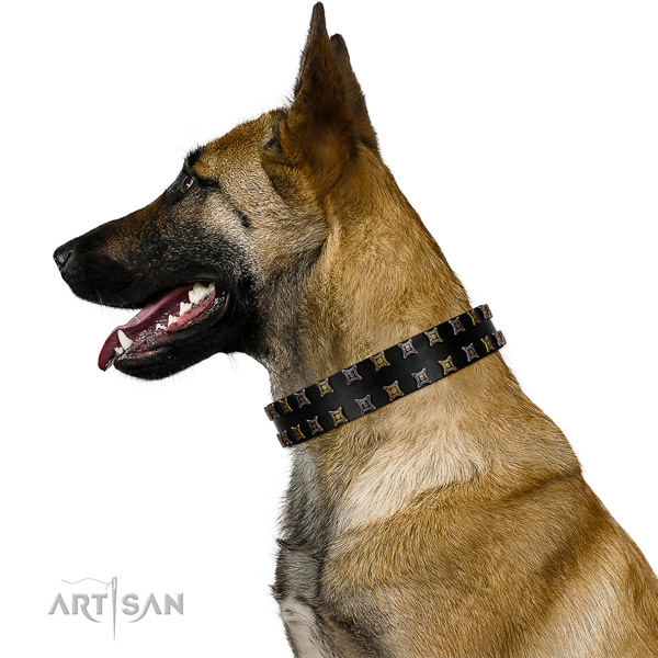 Soft genuine leather dog collar with decorations for your four-legged friend
