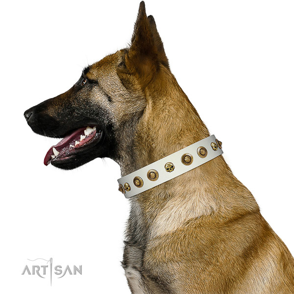 Quality genuine leather dog collar with adornments for your doggie