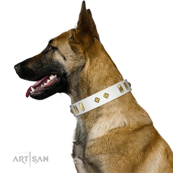 Comfy wearing best quality genuine leather dog collar with decorations