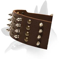 Cool Malinois Leather Dog Collar