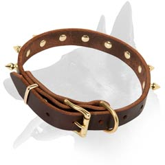 Spiked Malinois Leather Dog Collar