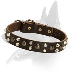 Excellent Malinois Leather Dog Collar