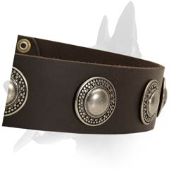 Perfect Belgian Malinois Leather Collar