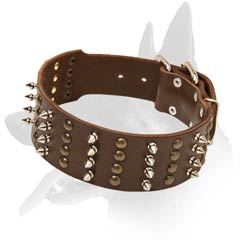 Safe Malinois Leather Dog Collar