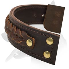 Superb Malinois Leather Dog Collar
