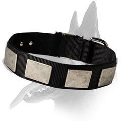 Cool Belgian Malinois Nylon Collar