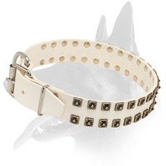 White Leather Collar for Belgian Malinois