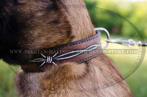 Exclusively Decorated Malinois Leather Collar