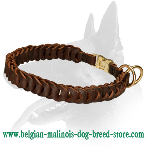 Choke collar leather for Belgian Malinois extra durable