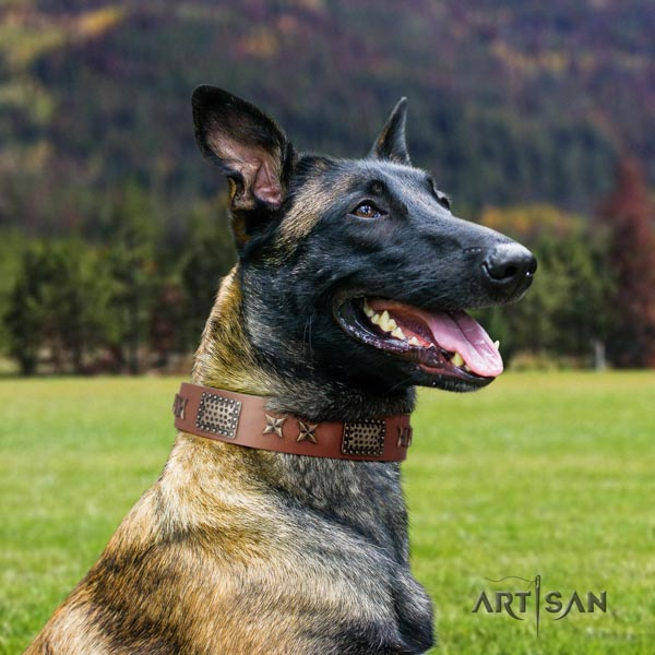 Belgian Malinois daily walking natural leather collar for your attractive pet