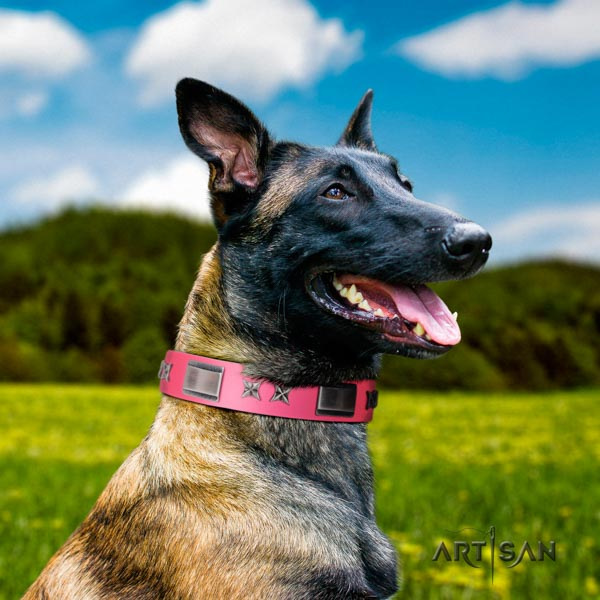 Belgian Malinois handy use full grain leather collar for your stylish dog