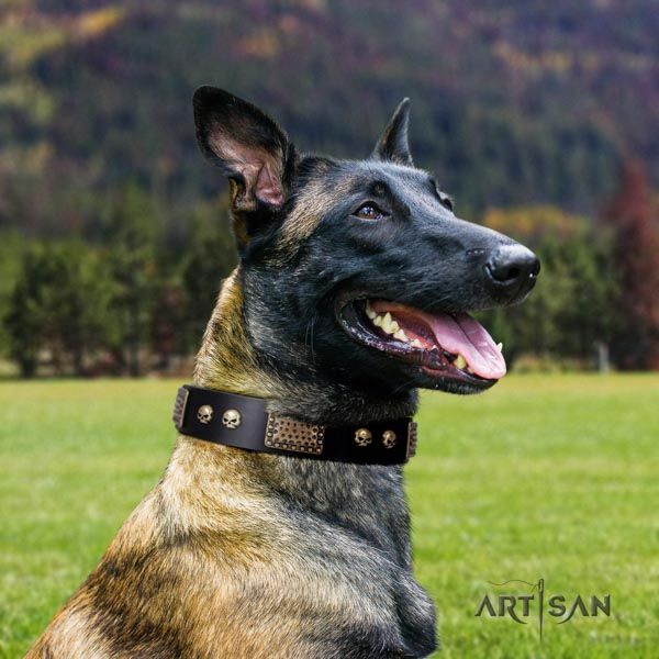 Belgian Malinois daily use full grain natural leather collar for your lovely doggie