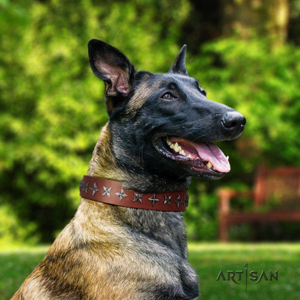 Belgian Malinois daily use natural leather collar for your beautiful canine