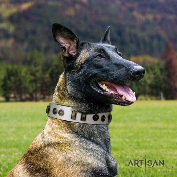 Belgian Malinois fancy walking genuine leather collar for your stylish dog