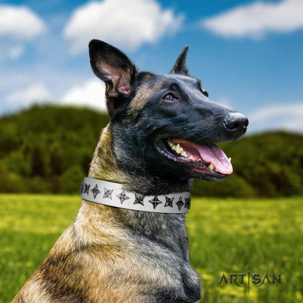 Belgian Malinois walking natural leather collar for your beautiful four-legged friend