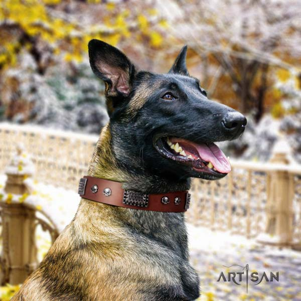 Belgian Malinois basic training full grain natural leather collar for your beautiful dog