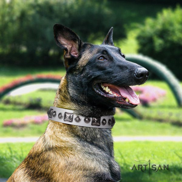 Belgian Malinois handy use full grain leather collar for your beautiful four-legged friend