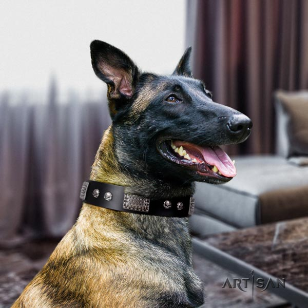 Belgian Malinois everyday walking full grain genuine leather collar for your lovely pet