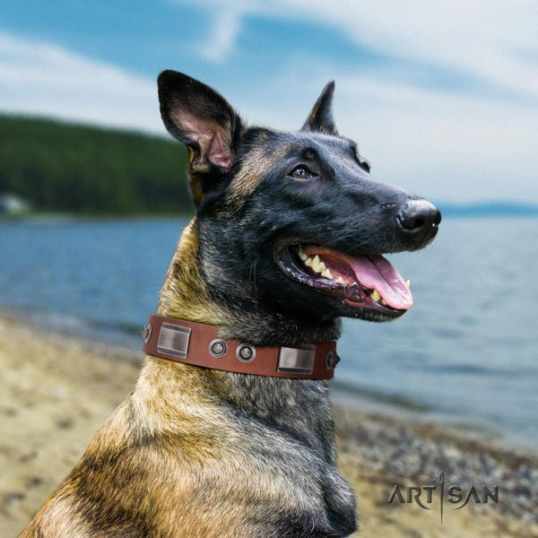 Belgian Malinois fancy walking genuine leather collar for your handsome canine