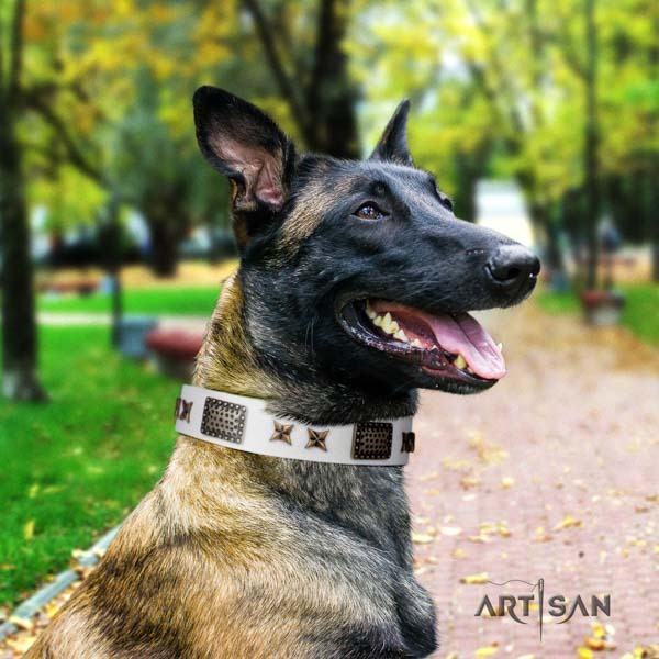 Belgian Malinois handy use leather collar for your stylish pet