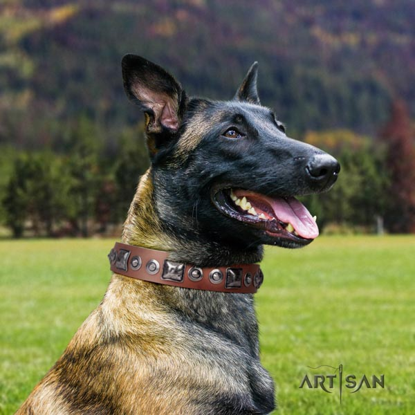 Belgian Malinois walking full grain natural leather collar for your handsome four-legged friend