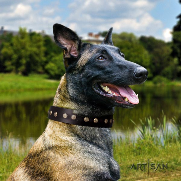 Belgian Malinois basic training leather collar for your impressive dog