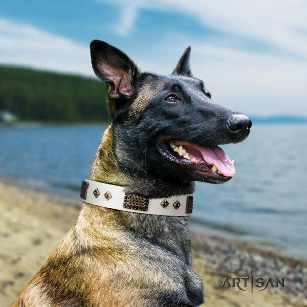 Belgian Malinois handy use full grain genuine leather collar for your handsome dog