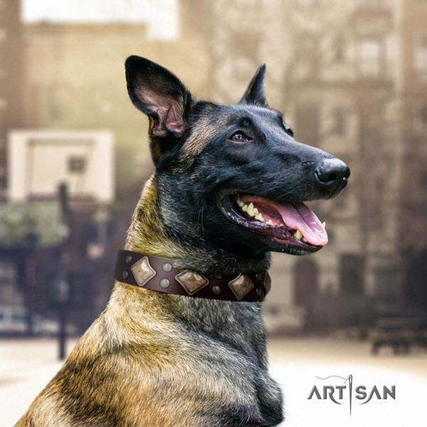 Belgian Malinois daily walking full grain leather collar for your beautiful doggie