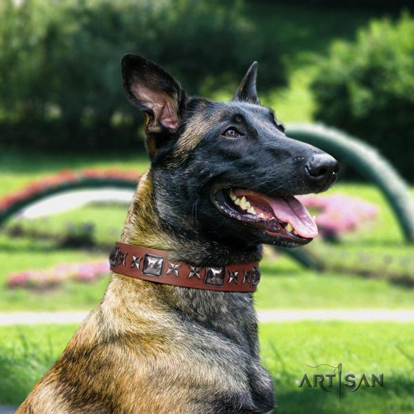 Belgian Malinois everyday use genuine leather collar for your beautiful four-legged friend