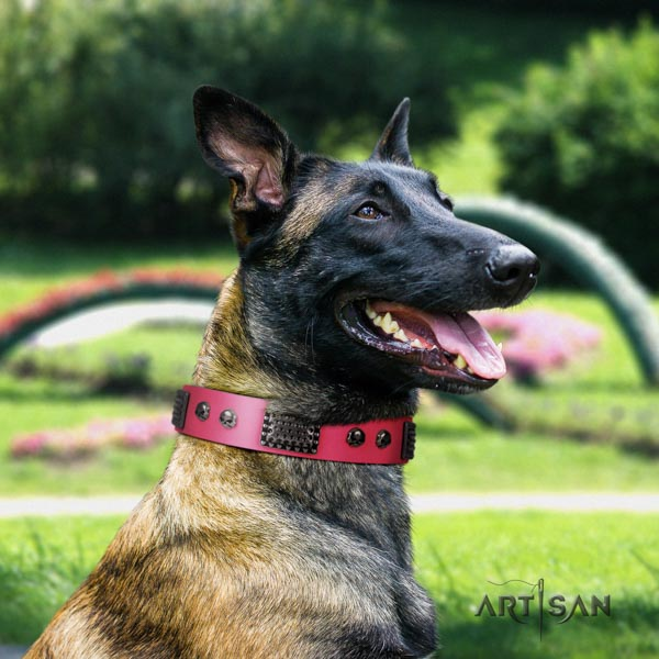 Belgian Malinois daily walking leather collar for your stylish pet