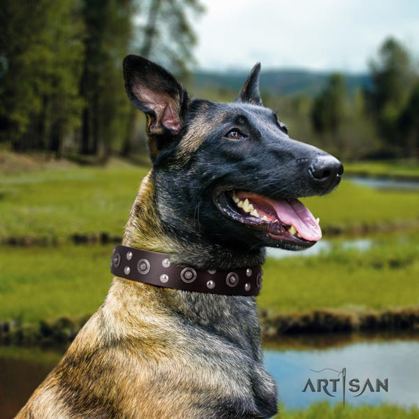Belgian Malinois basic training full grain natural leather collar for your impressive doggie