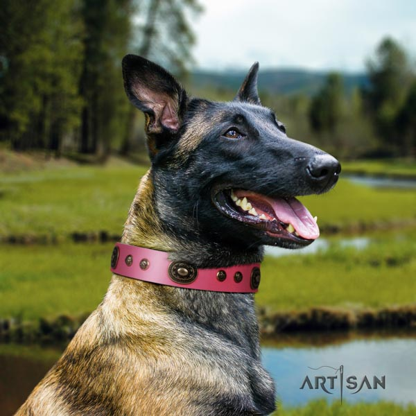 Belgian Malinois walking leather collar for your handsome dog