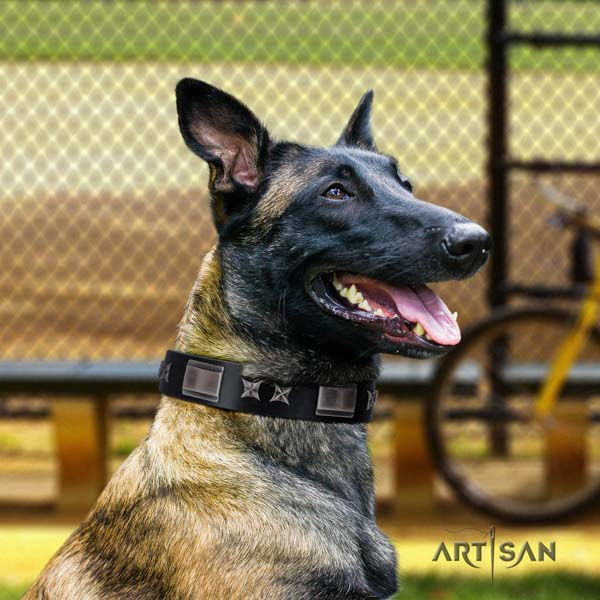 Belgian Malinois stylish walking full grain leather collar for your stylish doggie