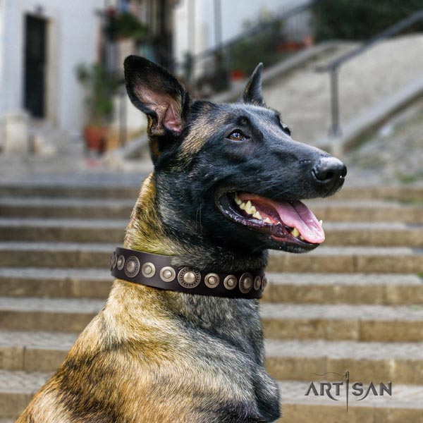 Belgian Malinois easy wearing full grain leather collar for your impressive dog