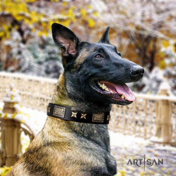Belgian Malinois daily walking leather collar for your lovely dog