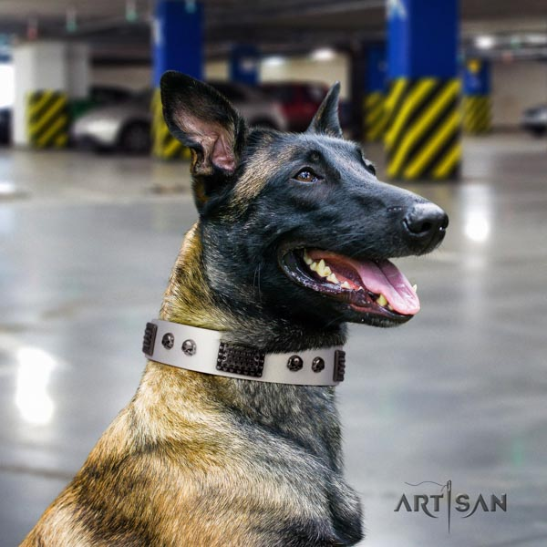 Belgian Malinois basic training genuine leather collar for your lovely four-legged friend