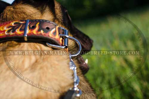 Painted Belgian Malinois Leather Collar