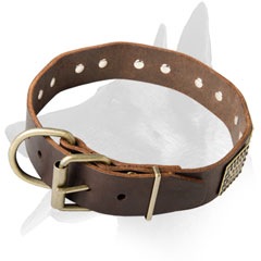 Malinois Leather Collar With Solid Brass Plates
