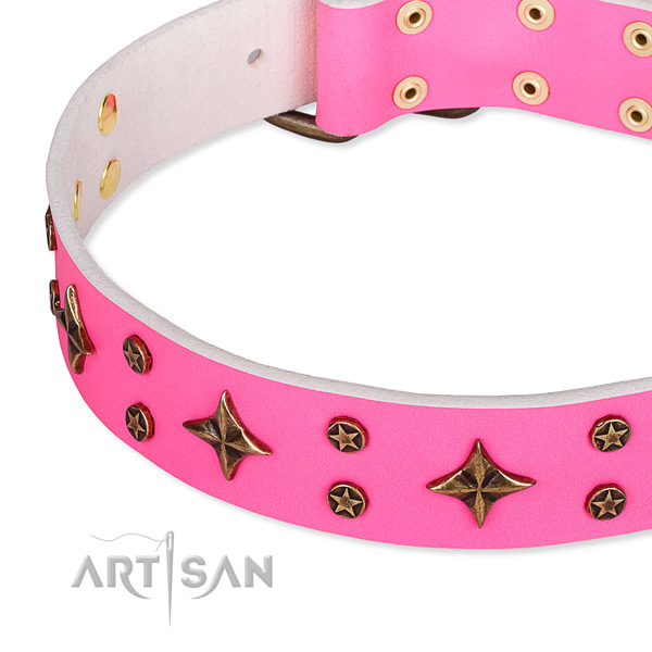 Full grain natural leather dog collar with unusual embellishments