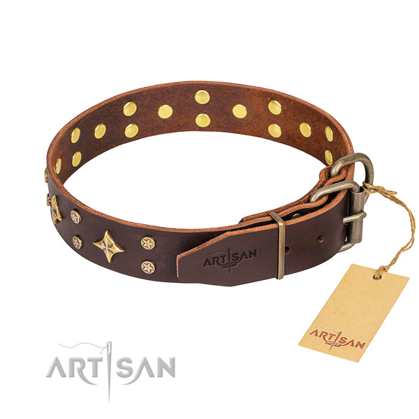 Daily walking leather collar with studs for your canine