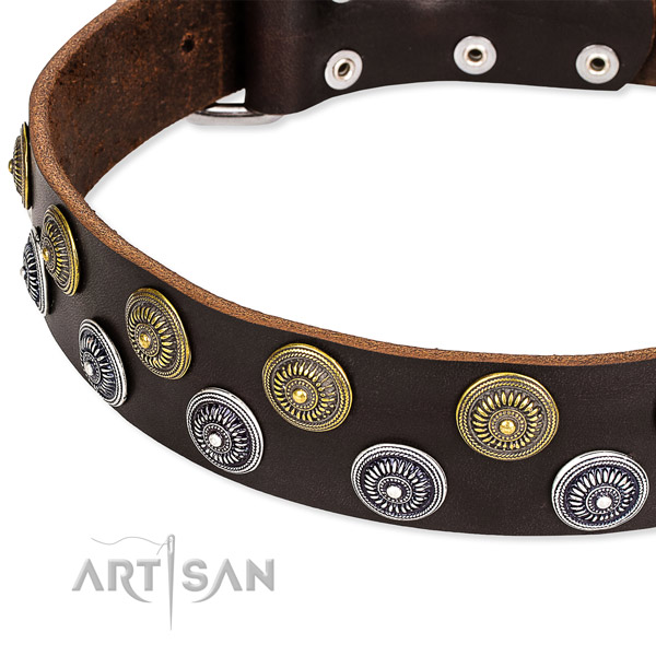 Genuine leather dog collar with top notch adornments