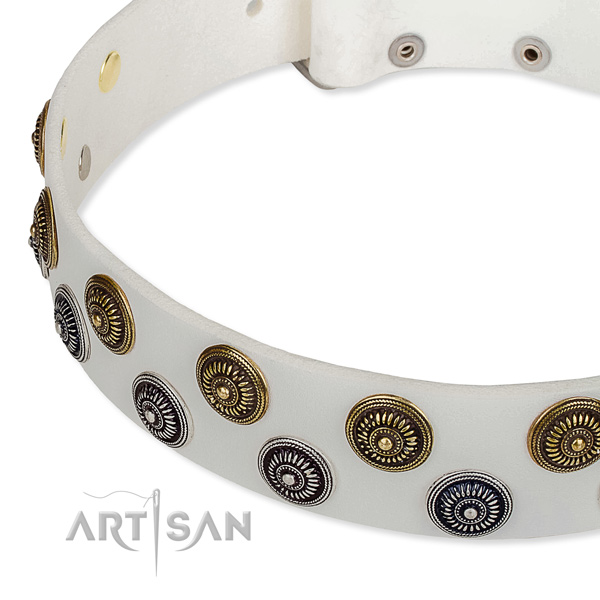 Genuine leather dog collar with significant studs